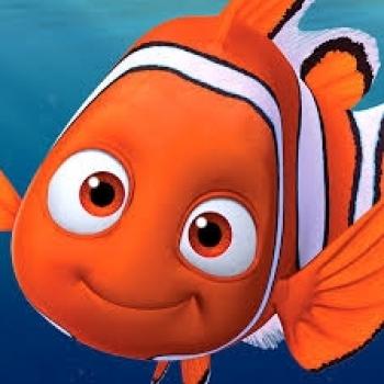 Kaçan Balık