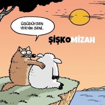 Mehmet Ali BEYOĞLU