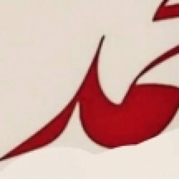 turgay xmax
